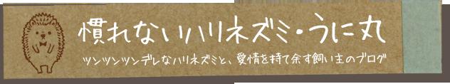 慣れないハリネズミ・うに丸 ツンツンツンデレなハリネズミと愛情を持て余す飼い主のブログ
