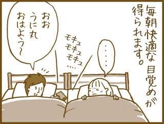 unimanga_mokyu
