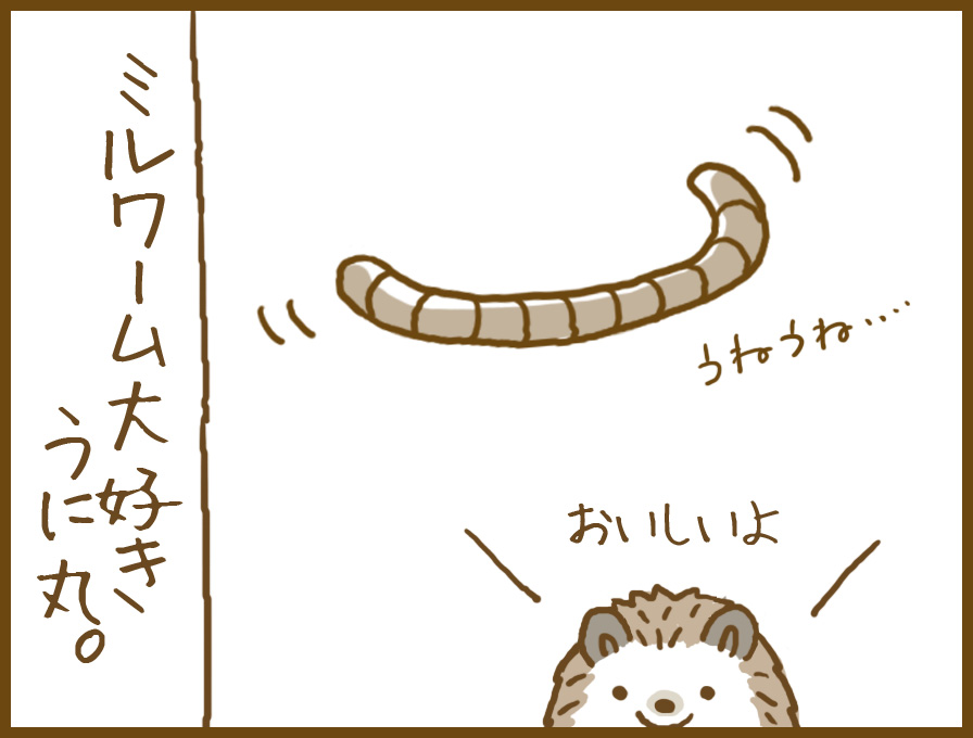 meal_worm