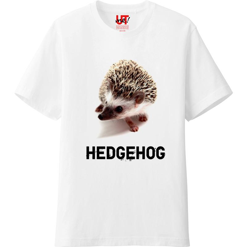 ハリネズミTシャツ 写真バージョン